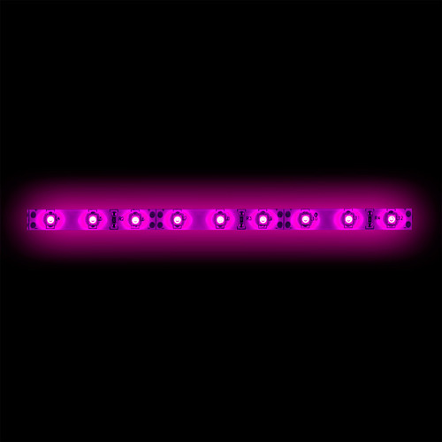 3528 Pink Light Strip - 1 Meter, 60 LED, Bulk