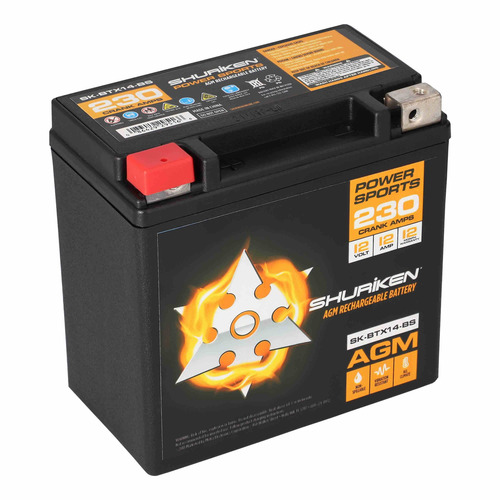 230 Crank AMPS 12AMP Hours AGM Battery