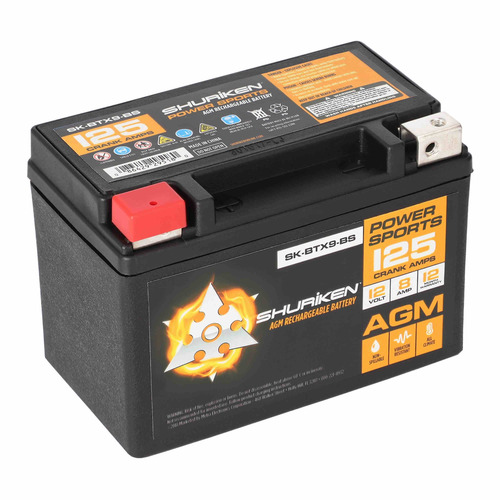 125 Crank AMPS / 8AMP Hours AGM Battery